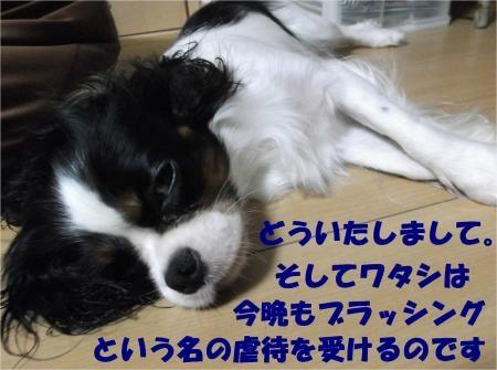 08_convert_20120829183731[1]