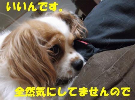 02_convert_20120830174718[1]