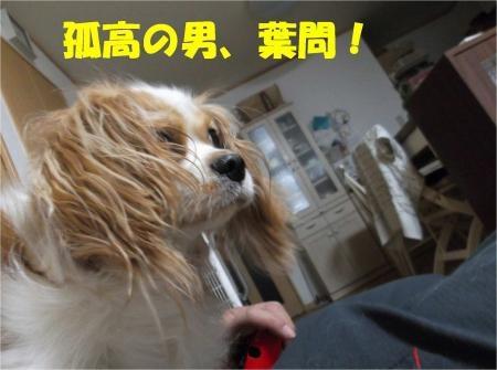 03_convert_20120830174748[1]