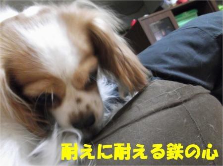 04_convert_20120830174821[1]