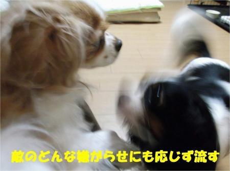 05_convert_20120830174851[1]