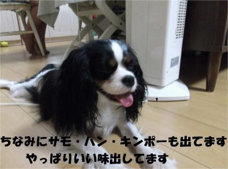 07_convert_20120830174943[1]