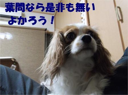 09_convert_20120830175040[1]
