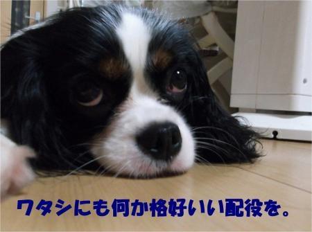 010_convert_20120830175109[1]