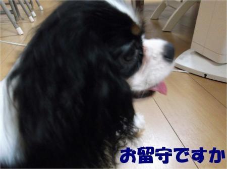 03_convert_20120831173528[1]