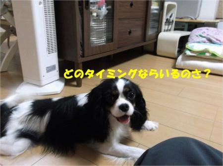 04_convert_20120831173555[1]