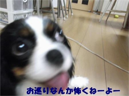 05_convert_20120831173623[1]