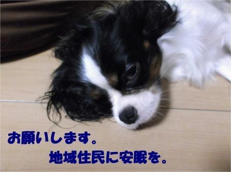 06_convert_20120831173654[1]