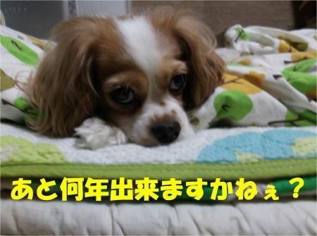 05_convert_20120903173924[1]