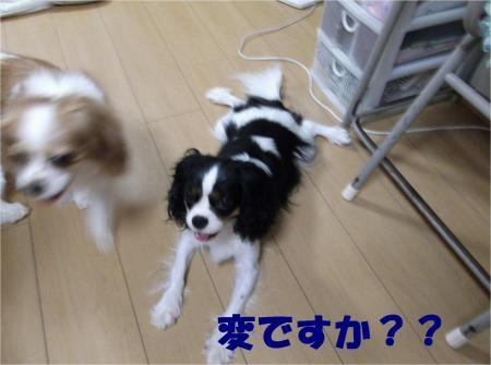 05_convert_20120905174532[1]