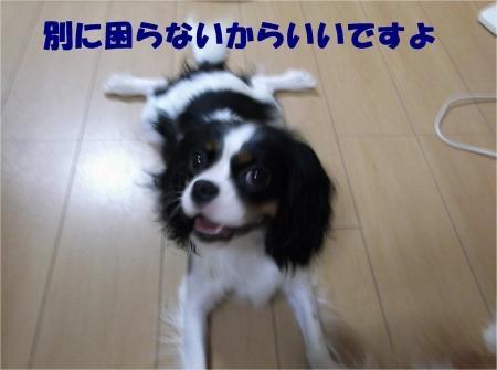 08_convert_20120905174652[1]