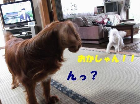 01_convert_20120906172312[1]