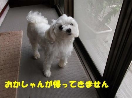 03_convert_20120906172419[1]