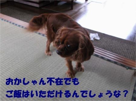 04_convert_20120906172454[1]