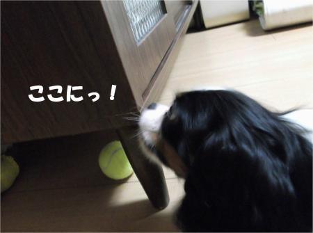 05_convert_20120910182849[1]