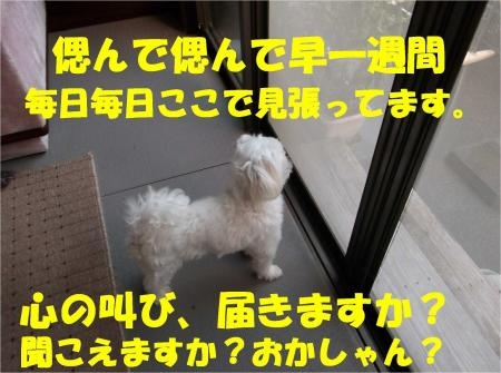 03_convert_20120911175217[1]