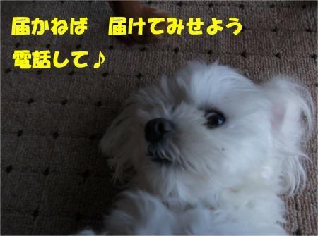 07-3_convert_20120911175659[1]