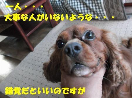06_convert_20120911175351[1]