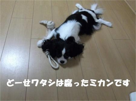 04_convert_20120912182323[1]