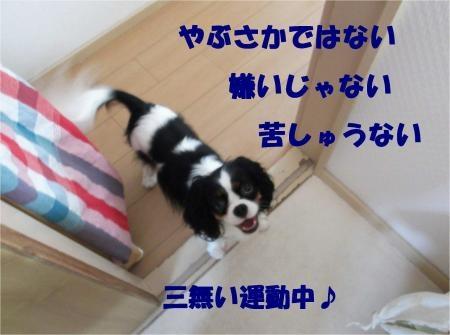 02_convert_20120913181354[1]
