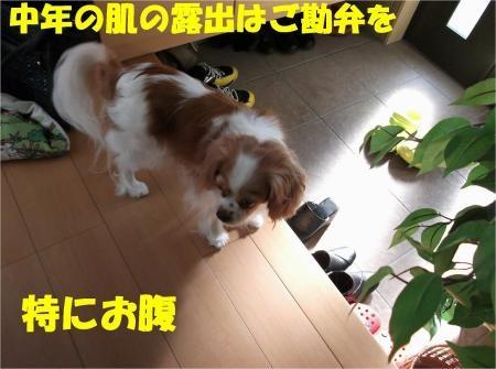 03_convert_20120913181423[1]