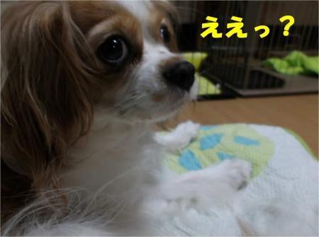 01_convert_20120914181155[1]
