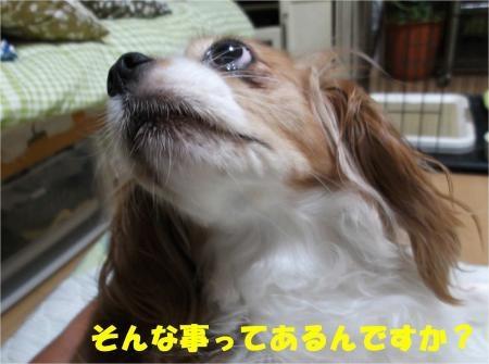 02_convert_20120914181228[1]
