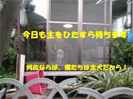 01_convert_20120918180404[1]