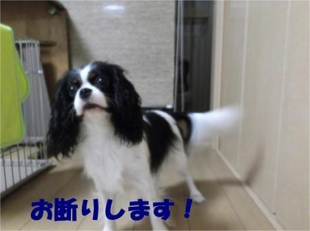 01_convert_20120919171655[1]