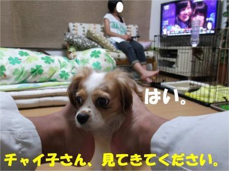 02_convert_20120919171732[1]