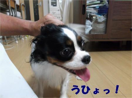 05_convert_20120919171910[1]