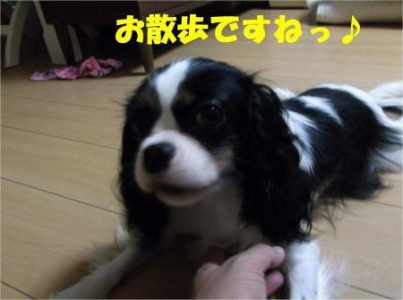 01_convert_20120921173507[1]