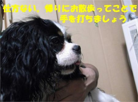 03_convert_20120921173649[1]