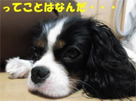 08_convert_20120921173915[1]