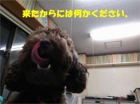 02_convert_20120924181318[1]