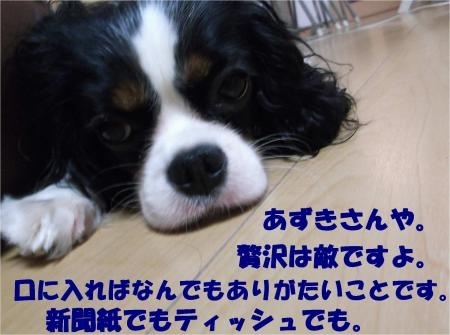 07_convert_20120924181533[1]