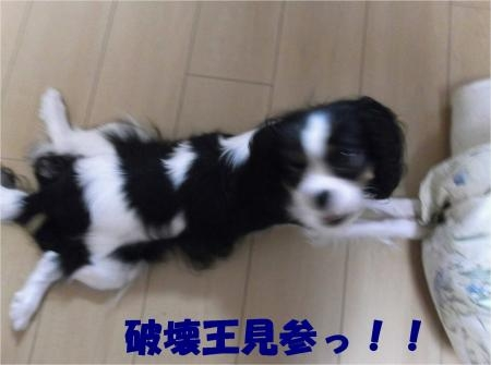 07_convert_20120925180446[1]