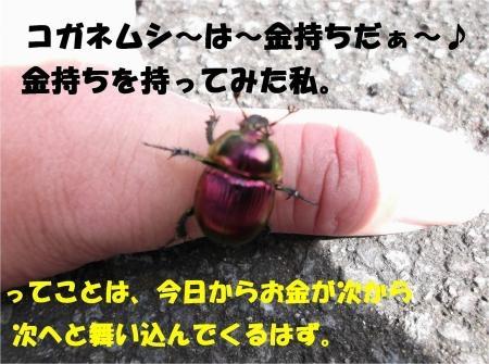 02_convert_20120926175032[1]