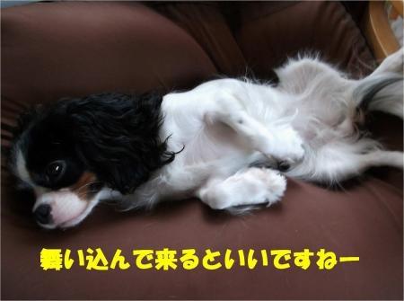 03_convert_20120926175103[1]