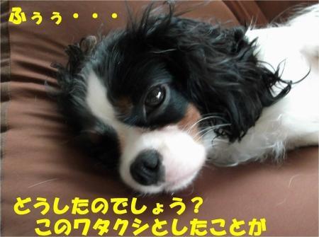 07_convert_20120926175301[1]