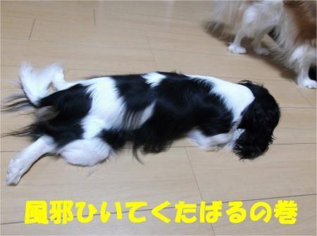 01_convert_20121001173012[1]