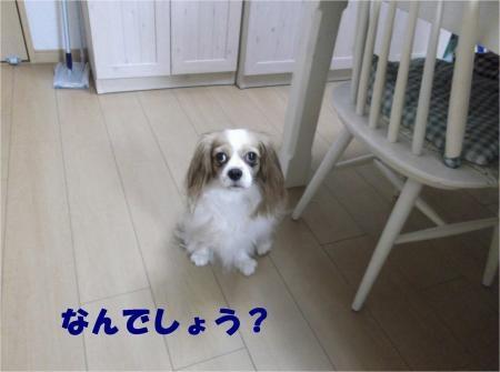 01_convert_20121002175448[1]