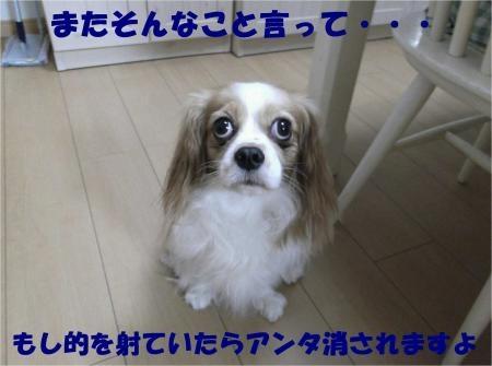 02_convert_20121002175554[1]