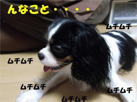 06_convert_20121002175754[1]