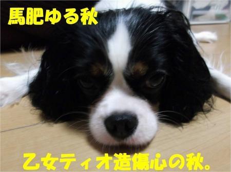 07_convert_20121002175823[1]