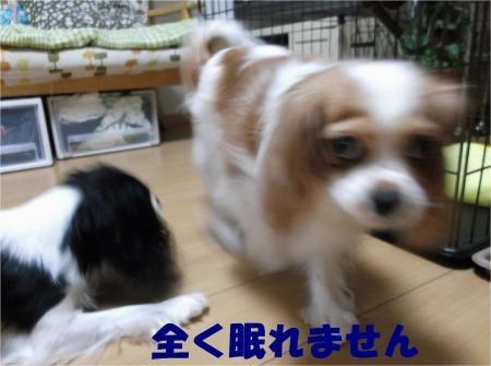 02_convert_20121003175249[1]