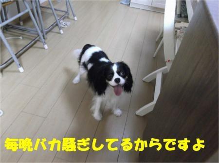 03_convert_20121003175321[1]