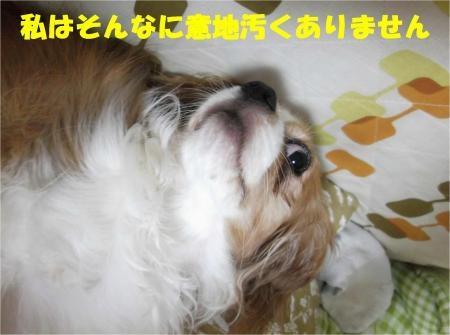 06_convert_20121004181144[1]