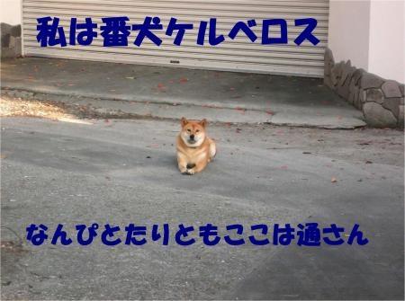 03_convert_20121005180743[1]