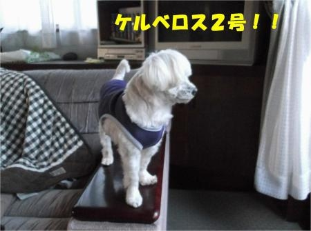 05_convert_20121005180910[1]